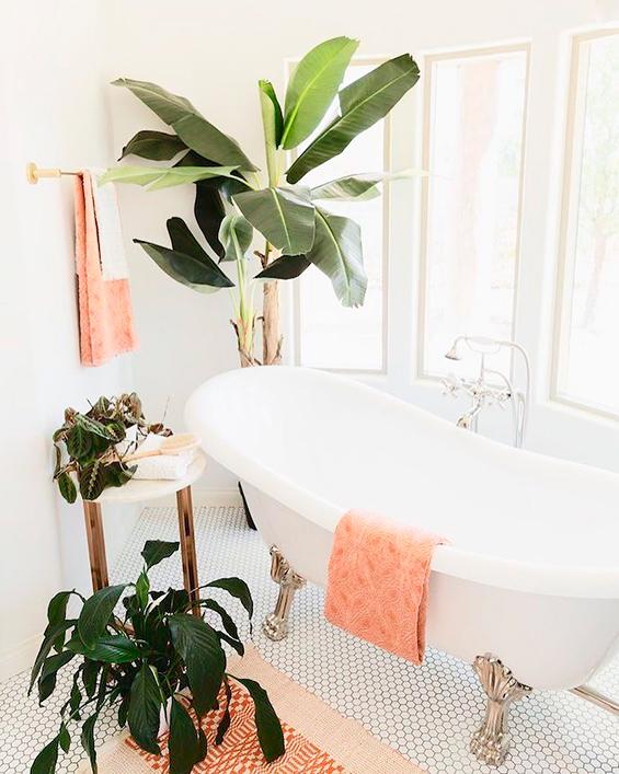 Pour une décoration nature, le bananier dans la salle de bain