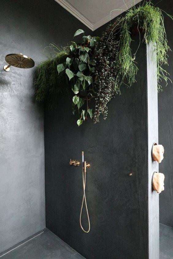 Fougères grimpantes pour décorer la douche
