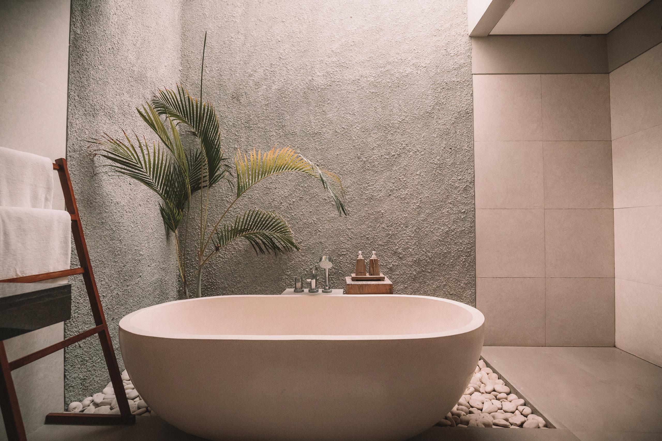 Les plantes vertes décoratives adaptées pour la salle de bains