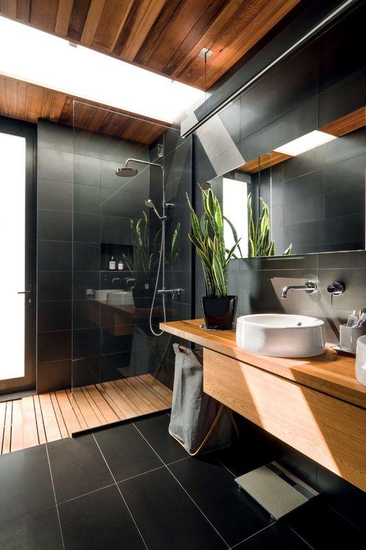 Sanseviere, une plante pour égayer la salle de bain