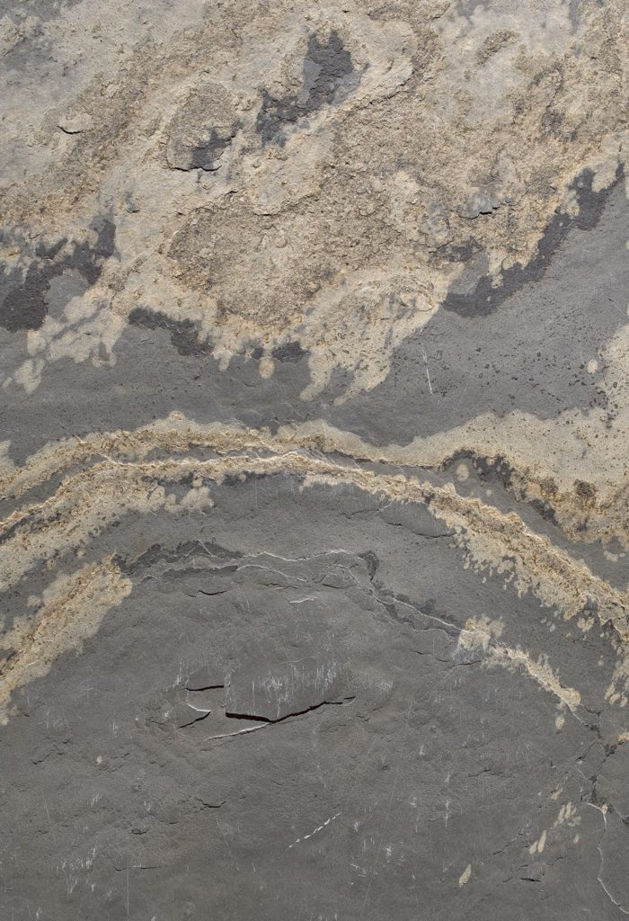 Feuille de pierre Aride