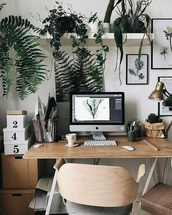 Décorer un bureau à domicile avec des plantes