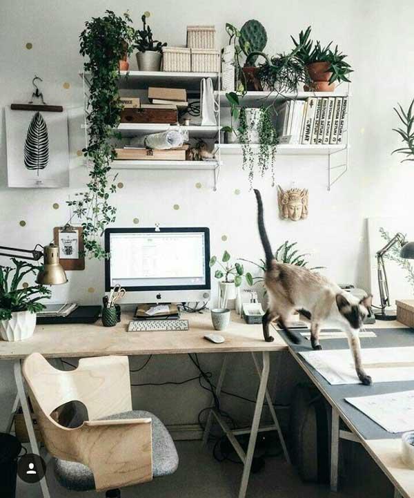 un bureau à domicile en télétravail végétalisé