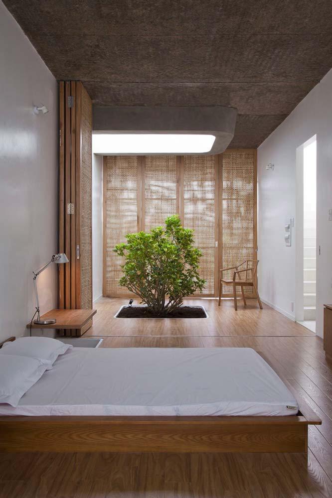 Une chambre minimaliste Japandi avec un arbre planté dans le sol