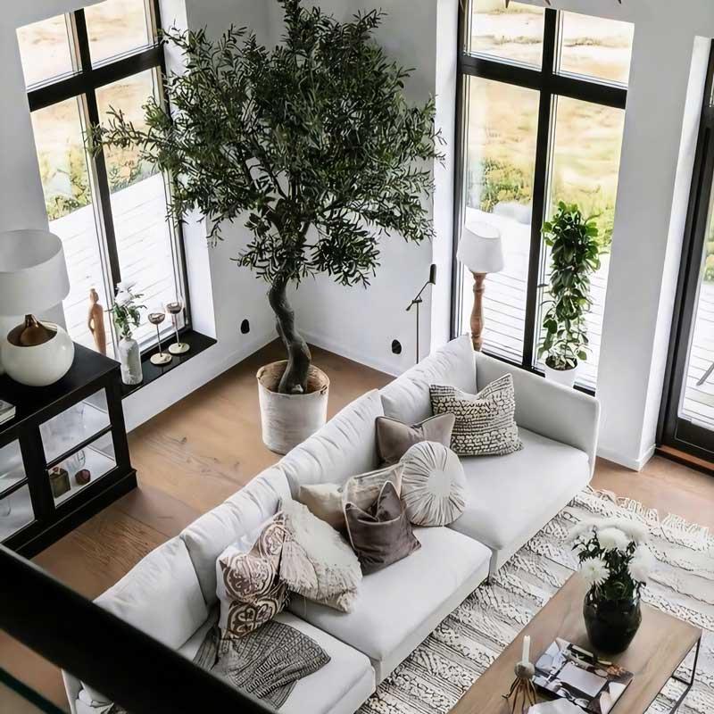 Un arbre d'intérieur en pot profite de la hauteur sous plafond et de la luminosité d'un grand salon blanc et noir