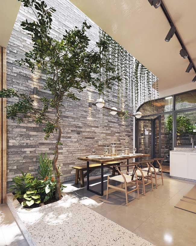 Planté dans une percée au sol, un arbre d'intérieur s'harmonise à du mobilier en bois et un mur en pierres grises